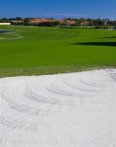 Fox Hollow Golf Club 5