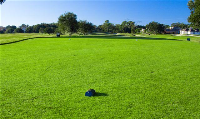 Fox Hollow Golf Club 7
