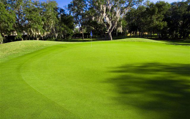 Fox Hollow Golf Club 17