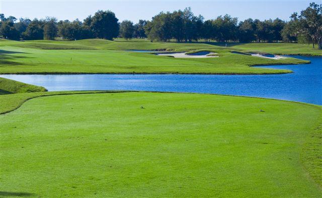 Fox Hollow Golf Club 20