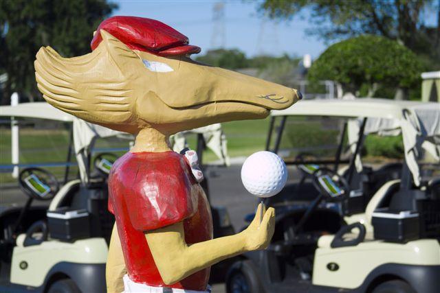 Fox Hollow Golf Club 24