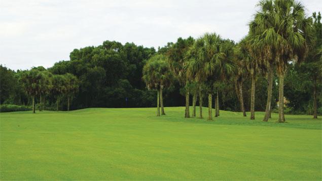 Kissimmee Golf Club 4