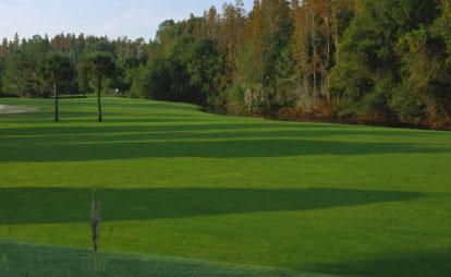 Northdale Golf Club 2