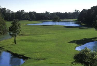 Northdale Golf Club 3