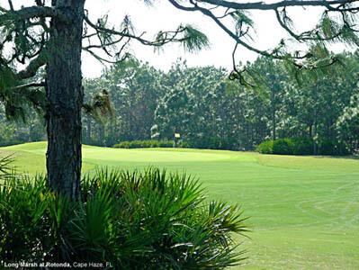 Waitin' for Winter at La Quinta Inn & Suites Sarasota