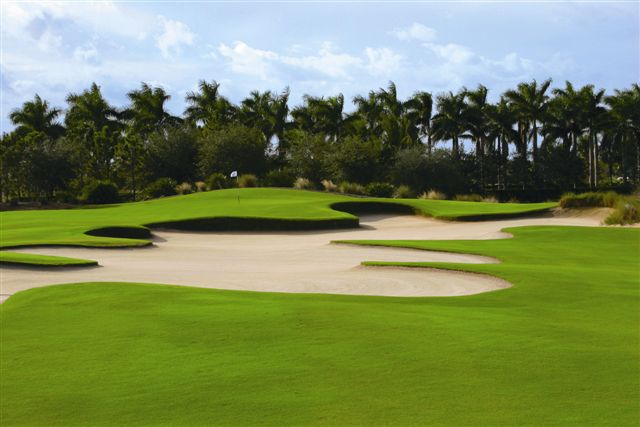 The Ritz-Carlton Golf Resort Naples 8