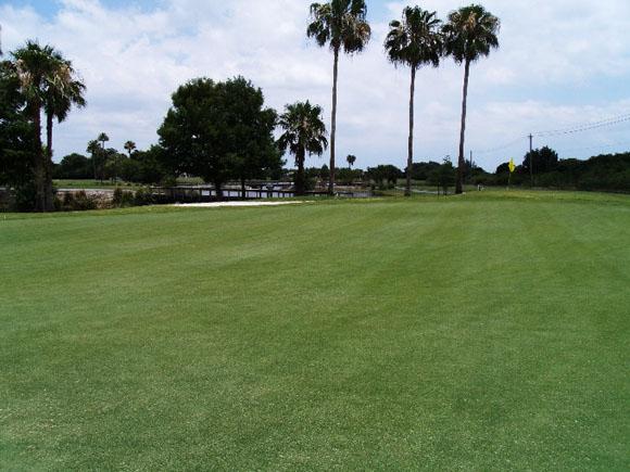 Grand Palms Golf & Country Club 5