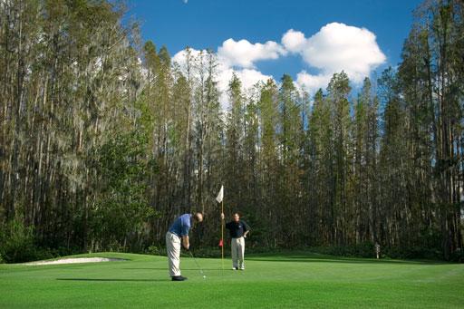 Saddlebrook Resort - Saddlebrook Course 15