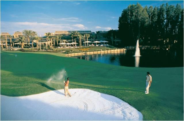 Saddlebrook Resort Hotel 12