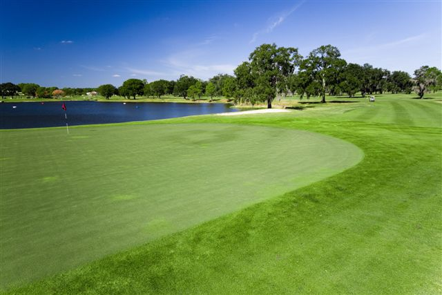 Eagles Golf Club - Lakes Course 12