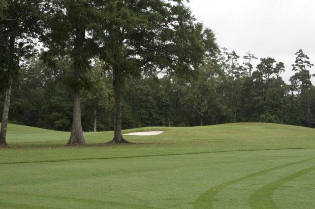 River Oaks Golf Plantation 8