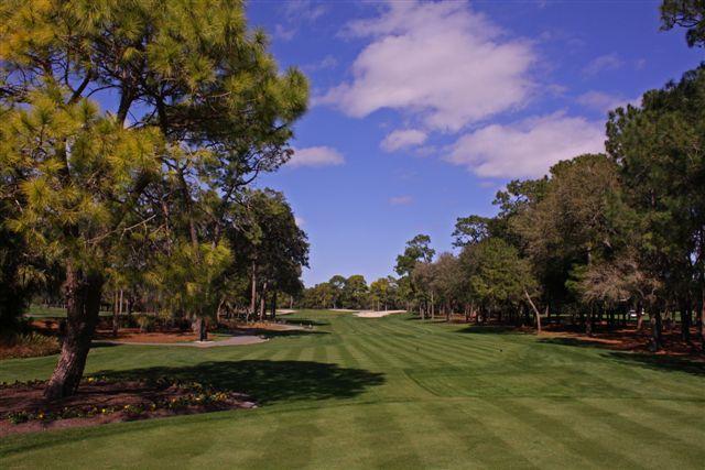 Innisbrook Golf Resort 1