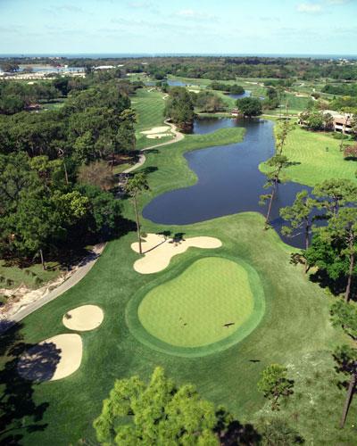 Innisbrook Golf Resort 7