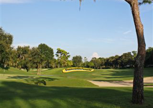 Innisbrook Golf Resort 10