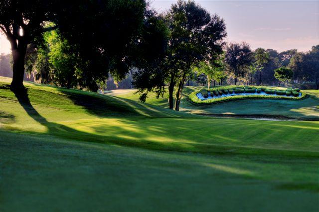 Innisbrook Golf Resort 11