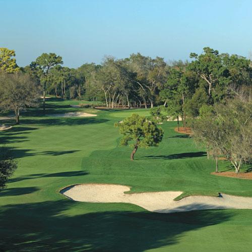 Innisbrook Golf Resort 13