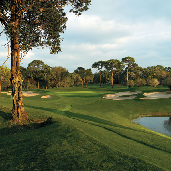 Innisbrook Golf Resort 14