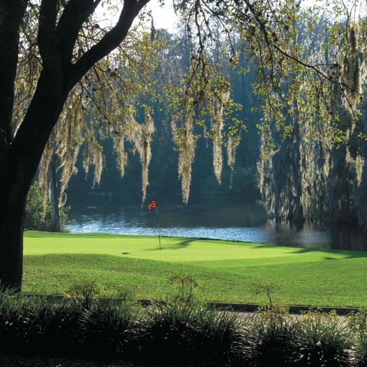 Innisbrook Golf Resort 15