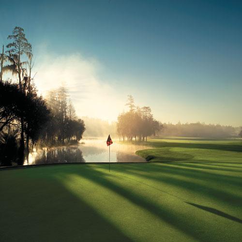 Innisbrook Golf Resort 16