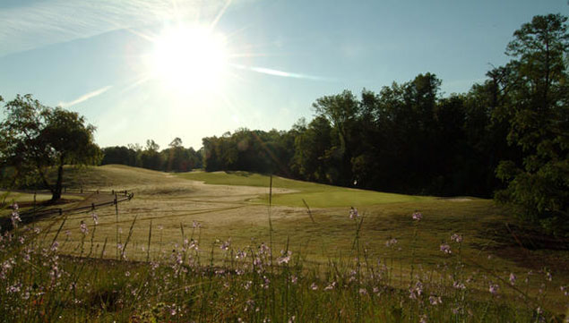 Blackmoor Golf Club 4