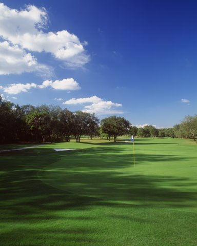 Bloomingdale Golf Club 6