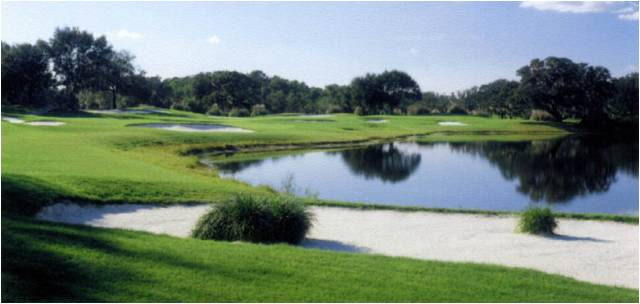 Bloomingdale Golf Club 8