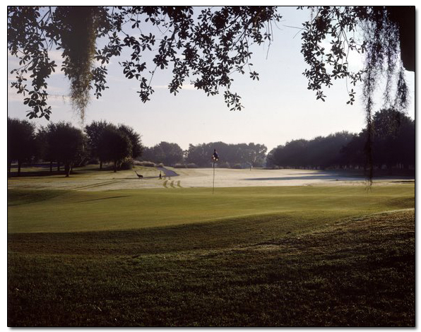 Bloomingdale Golf Club 12