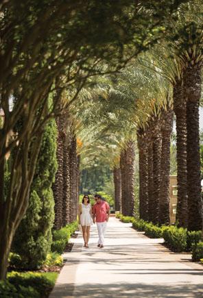 Four Seasons Resort Orlando at WDW 17