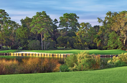 3 Nights 2 Rounds in the Palmettos
