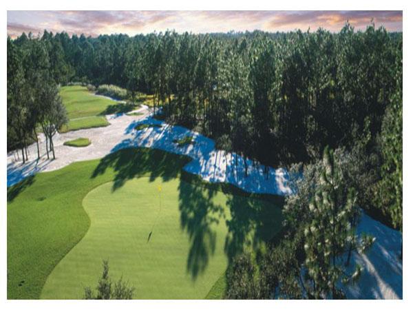 Tiger's Eye Golf Links 1