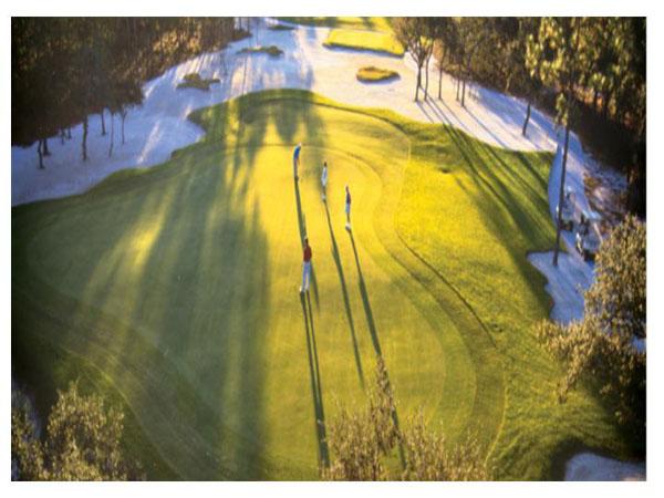 Tiger's Eye Golf Links 4