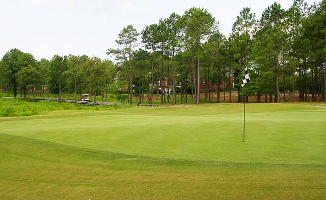 Tiger's Eye Golf Links 5