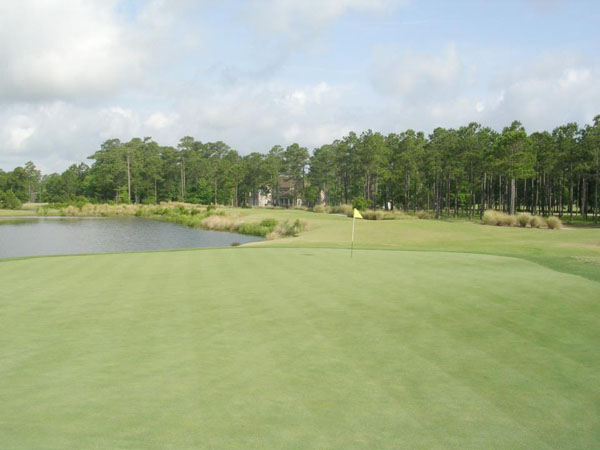 Tiger's Eye Golf Links 8