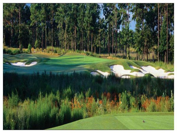 Tiger's Eye Golf Links 10