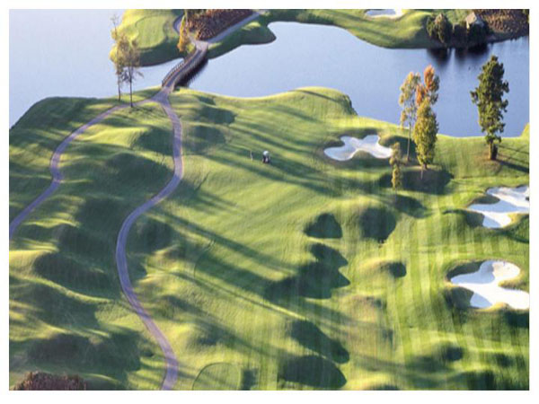 Tiger's Eye Golf Links 14