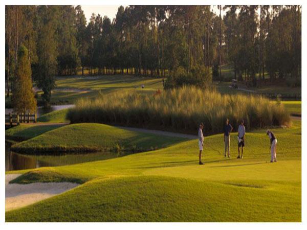 Tiger's Eye Golf Links 15