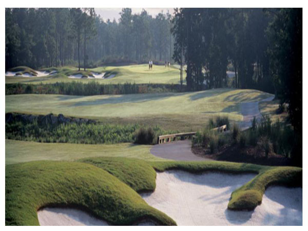 Tiger's Eye Golf Links 17