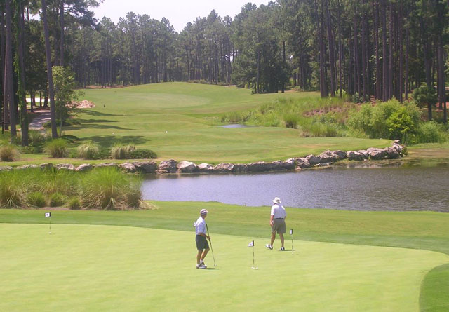 Tiger's Eye Golf Links 21