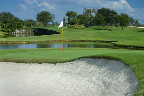 Saddlebrook Resort - Palmer Course