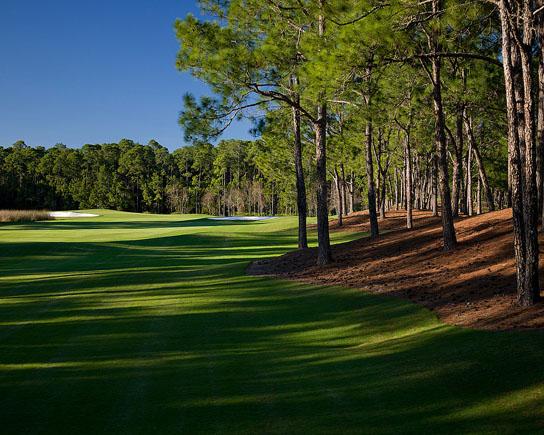 Tranquilo Golf Club 5