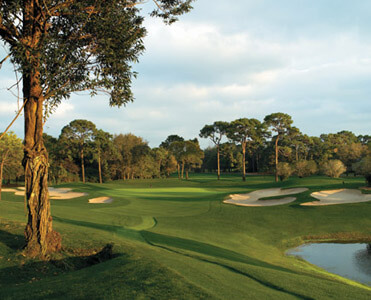 Innisbrook Resort - Copperhead Course