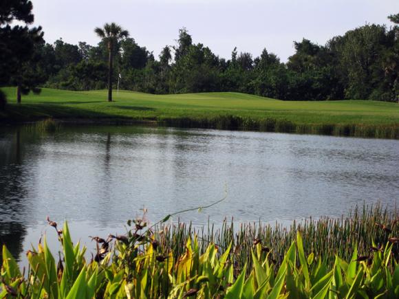 Preserve at Tara Golf Club 2