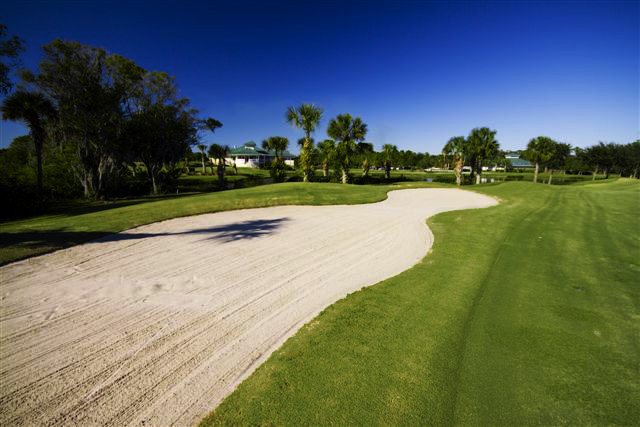 Preserve at Tara Golf Club 8