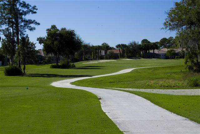 Preserve at Tara Golf Club 11