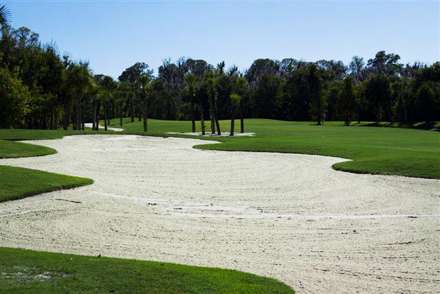 Preserve at Tara Golf Club 16