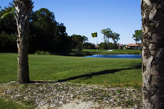 Preserve at Tara Golf Club 17