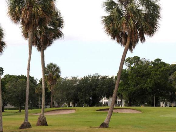 Palm Aire - Palms Course 8