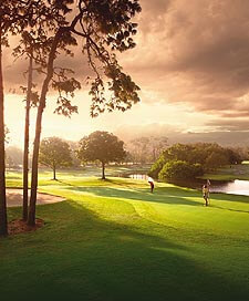Innisbrook Golf Resort - PKG