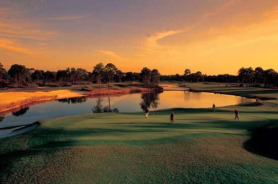 Sheraton PGA Vacation Resort 12