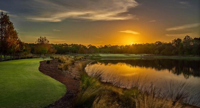 Tiburon Golf Club -  Black Course